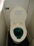 Intretinere Toaleta